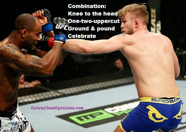 UFC fight night 37 Gustafsson vs. Manuwa