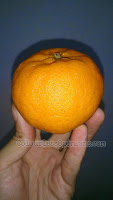 mandarin orange expensive