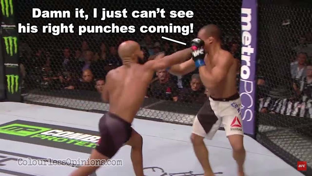 UFC 191 johnson punch dodson