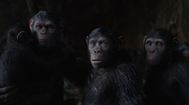 caesar family war planet apes 3 still
