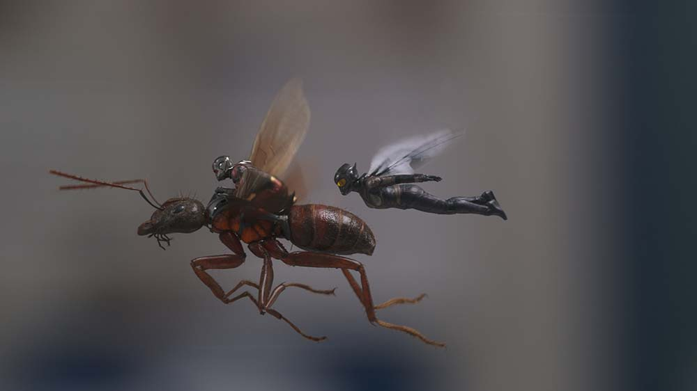 ant man wasp flying still